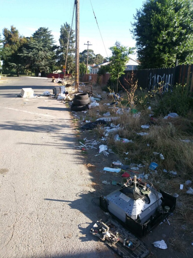 """Good morning everyone, here are the pictures [taken] yesterday at Olive St between 79-80th Ave, just to give another idea of the issue the community is struggling with [on] a daily [basis].""—Emma Paulino in June 16, 2017 email to Mayor Schaaf, City Councilmembers and other officials"